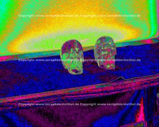 Index of images skull speaks carole davisg fandeluxe Image collections