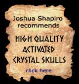 Shapiro Crystal Skulls